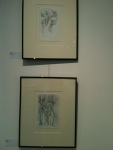 Sketchbook pages, matted and framed