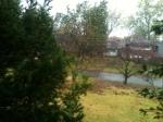Hurricane Sandy, Alexandria VA