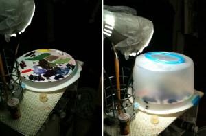 cake-carrier palette